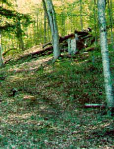 Outhouse on a Steep hillside in the southern  Adirondack Mountains