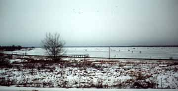 Escanaba Bay Outhouse and Ice Fishermen