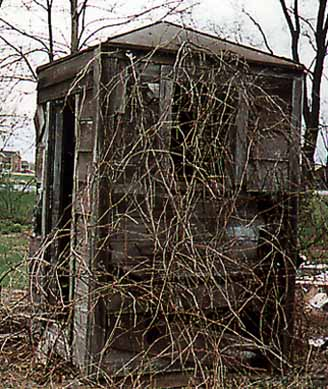 Side View of Tin-roofed Outhouse