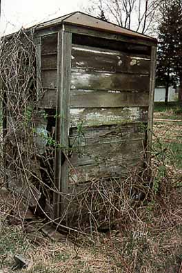 Rear View of Tin-roofed Outhouse