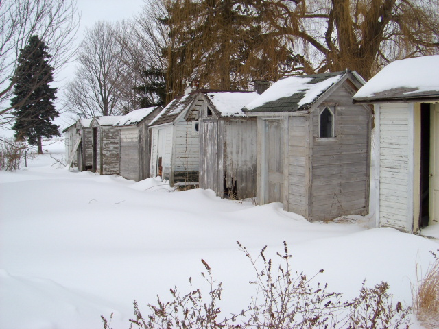 Outhouse Collection near Blaine, Illinois